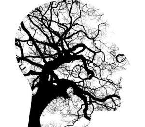 MBSR : Faire face au stress et aux émotions